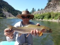 blackfoot river rainbow on a spruce moth