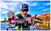 fall brown trout on the clark fork