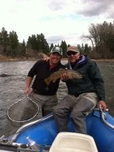 flyfishing the blackfoot for brown trout