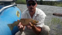 flyfishing the blackfoot river in montana