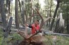 got your elk yet