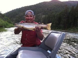 rainbow bend drive brown trout on a streamer