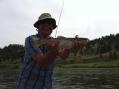 you can always get a nice rainbow flyfishing the missouri